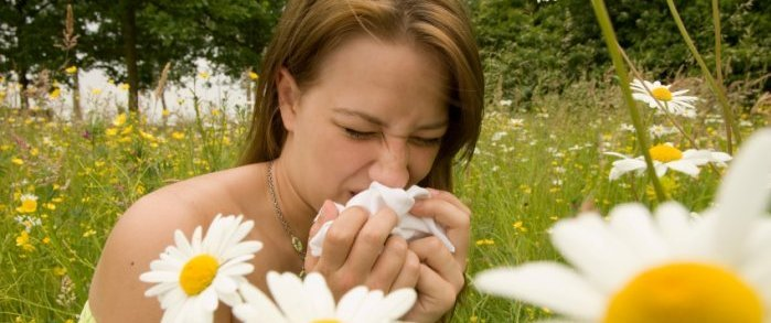 Contact lenses for hayfever allergy